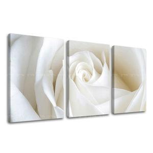 Obraz na stenu 3 dielny KVETY XOBKV103E32 (moderné obrazy na plátne)