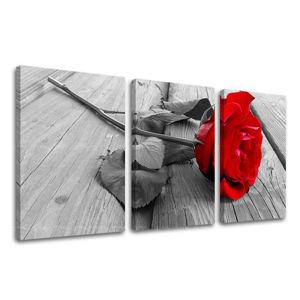 Obraz na stenu 3 dielny KVETY XOBKV115E32 (moderné obrazy na plátne)
