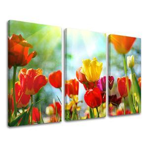 Obraz na stenu 3 dielny KVETY XOBKV145E30 (moderné obrazy na plátne)